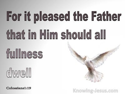 Colossians 1:19 In Him Dwells All Goodness (gray)