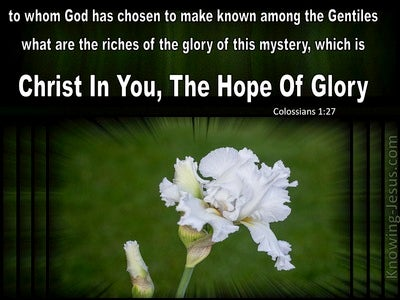Colossians 1:27 Christ In You The Hope Of Glory (green)