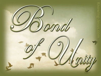 Bond of Unity (devotional) - Colossians 3:14