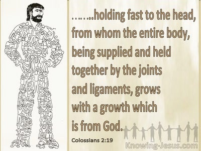 Colossians 2:19 The Body Holds Fast To The Head (beige)