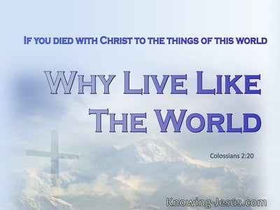 Colossians 2:20 You Died With Christ To The Things Of The World (gray)