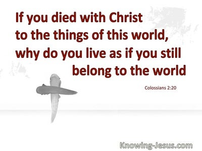 Colossians 2:20 You Died With Christ To The Things Of The World (red)