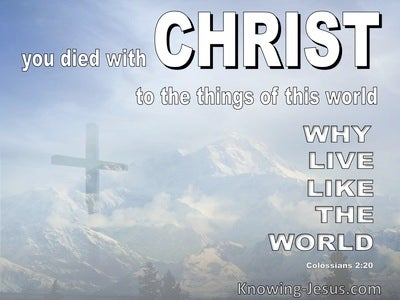 Colossians 2:20 You Died With Christ To The Things Of The World (white)