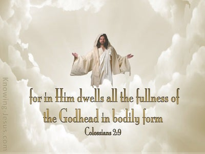 Colossians 2:9 In Him Dwells All The Fullness (beige)