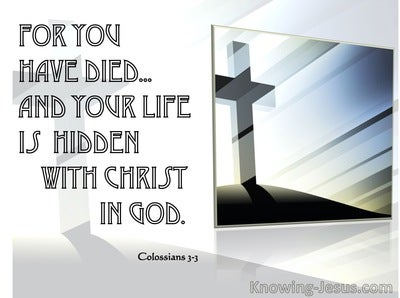 Colossians 3:3 Hid with Christ in God (silver)