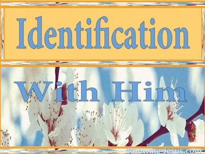 Identification With Him (devotional) (blue) - Romans 6:5