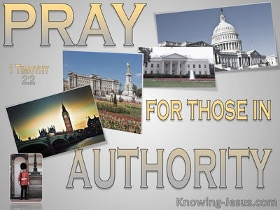 1 Timothy 2:2 Pray For Kings And All In Authority (gray)