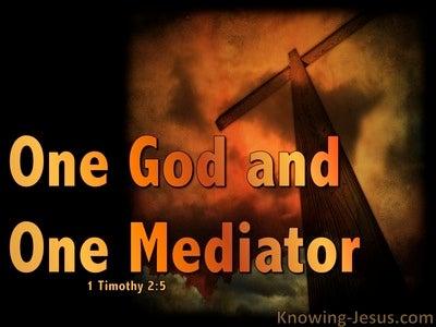 1 Timothy 2:5 One Mediator Between God And Man (orange)