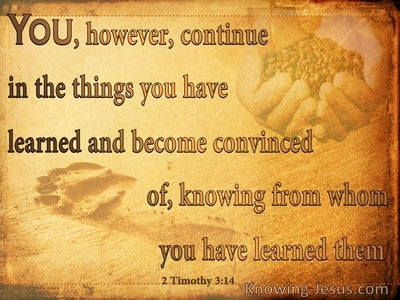 2 Timothy 3:14 Continue In The Things You Have Learned (orange)