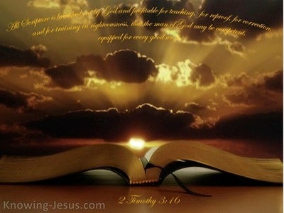 2 Timothy 3:16 All Scripture Is Written For Our Learning (brown)