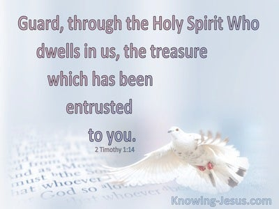 2 Timothy 1:14 Guard The Treasure Entrusted To You (pink)