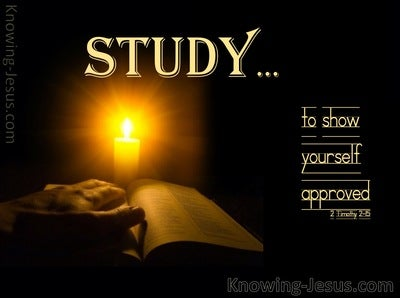 2 Timothy 2:15 Study To Show Yourself Approved (orange)