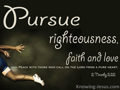 19 Bible verses about Pursuing