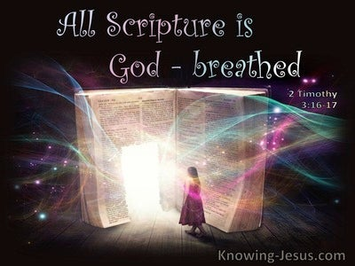 2 Timothy 3:16 All Scripture Is God:Breathed (pink)