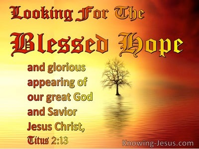 Titus 2:13 Looking For The Blessed Hope (red)
