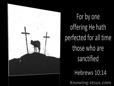 Hebrews 10:14 By One Offering He Has Perfect All (black)