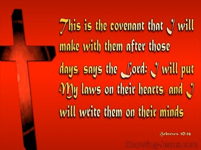Hebrews 10:16 My Laws In Their Heart (red)