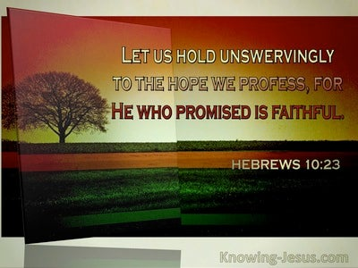 Hebrews 10:23 Let Us Hold Unswervingly To The Hope We Profess. He Who Promised Is Faithful (windows)03:29