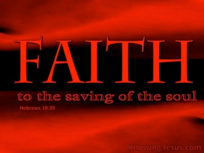 Biblical Faith (devotional) (red) - Hebrews 10:39