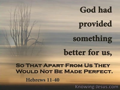Hebrews 11:40 God Provided Something Better (brown)