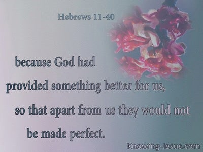 Hebrews 11:40 God Provided Something Better (pink)