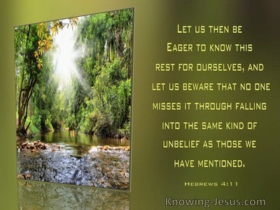 Hebrews 4:11 Let Us Be Eager To Know This Rest For Ourselves (windows)11:16