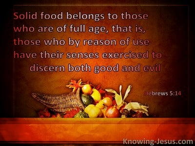 Hebrews 5:14 Solid Food Belongs To Those Who Are Of Full Age (windows)12:15