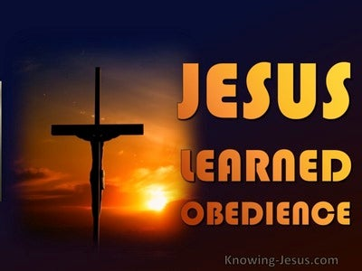 Hebrews 5:8 Jesus Learned Obedience (orange)