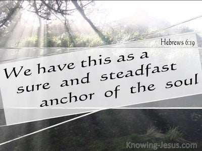 Hebrews 6:19 We Have A Sure And Steadfast Hope (black)