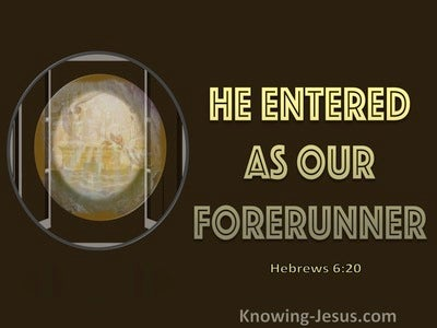 Hebrews 6:20 He Entered As Our Forerunner (brown)