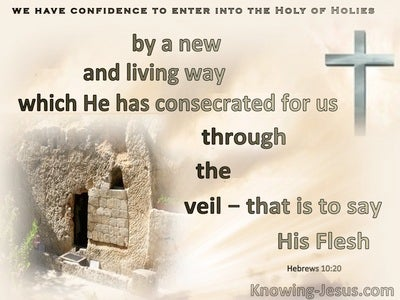 Hebrews 10:20 A New And Living Way : The Veil : His flesh (brown)