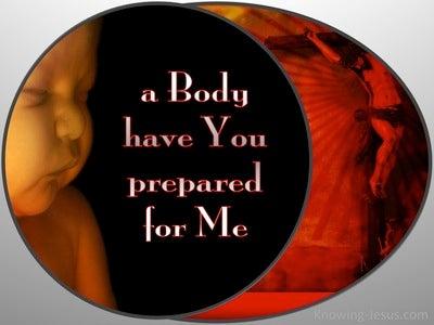 Hebrews 10:5 A Body You Have Prepared (gray)