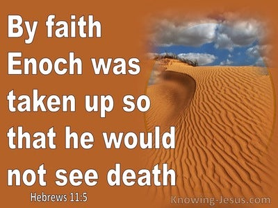 Hebrews 11:5 By Faith Enoch Was Taken Up So He Would Not See Death (white)