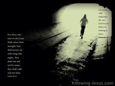 Hebrews 12:1 Run With Patience (sage)