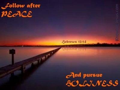 Hebrews 12:14 Follow After Peace (orange)