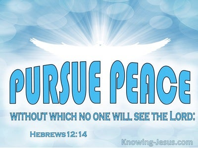 Hebrews 12:14 Pursue Peace With WIthout Which No One Will See The Lord (aqua)