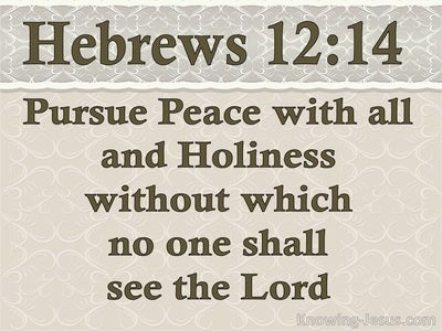 Hebrews 12:14 Pursue Peace And Holiness (beige)
