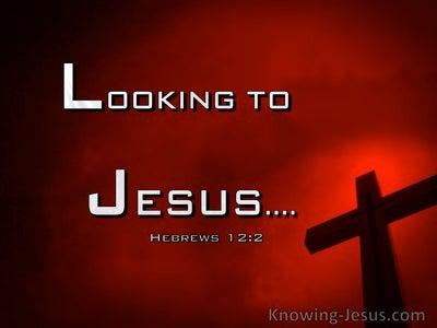 Hebrews 12:2 Looking To Jesus (windows)01:30