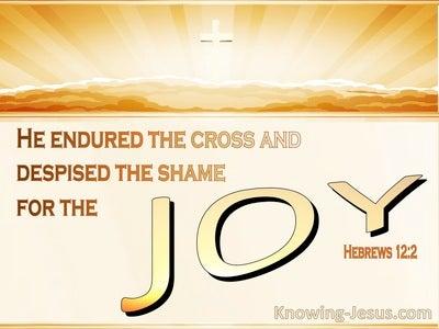 Hebrews 12:2 Looking Unto Jesus : Author And Finisher (orange)