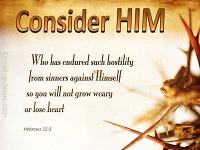 Hebrews 12:3 Consider Him (brown)