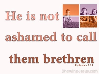 Hebrews 2:11 Not Ashamed To Call Them Bretheren (pink)