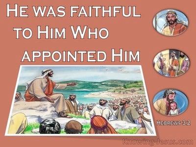 Hebrews 3:2 He Was Faithful Like Moses (brown)