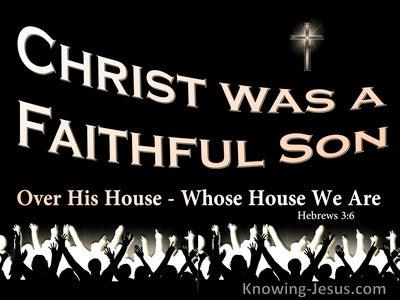 Hebrews 3:6 Christ Was A Faithful Son Over All His House (black)