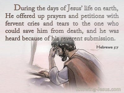 Hebrews 5:7 Jesus Offered Up Prayers And Petition With Fervant Cries (pink)