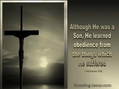 Hebrews 5:8 Jesus Learned Obedience Thru Suffering (beige)