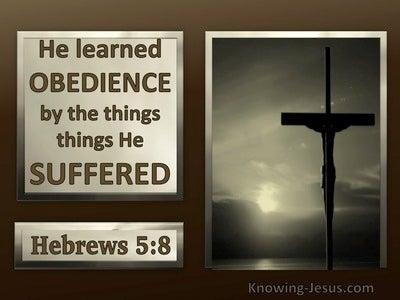 Hebrews 5:8 Jesus Learned Obedience Thru Suffering (brown)