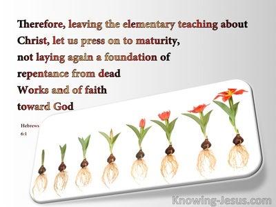 Hebrews 6:1 Leave The Elementary Teachings (white)