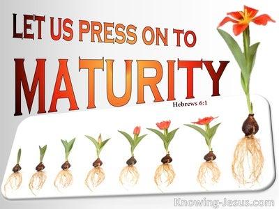 Hebrews 6:1 Press On To Maturity (white)