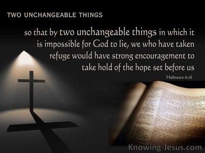Hebrews 6:18  Two Unchangable Things (black)