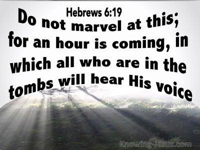 Hebrews 6:19 Hope In Him Alone (gray)